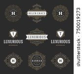 luxury logos templates set ... | Shutterstock .eps vector #750019273