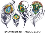 peacock feathers | Shutterstock .eps vector #750021190