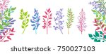 set of several colorful... | Shutterstock .eps vector #750027103