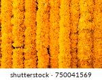 Marigold Yellow Flowers Textur...