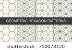 black and white geometric... | Shutterstock .eps vector #750073120