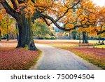 old oak tree in muskau park ...   Shutterstock . vector #750094504