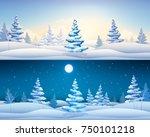 beautiful winter horizontal...