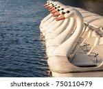 Swan Boat Floating In Lake...