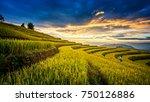rice fields on terraced of... | Shutterstock . vector #750126886