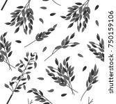 oat branches set   vector... | Shutterstock .eps vector #750159106