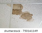 water leak on the ceiling tiles ... | Shutterstock . vector #750161149