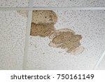 Water Leak On The Ceiling Tile...