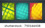 template of the design of... | Shutterstock .eps vector #750166438