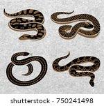black snakes set of reptiles... | Shutterstock .eps vector #750241498