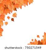 autumn background with autumn... | Shutterstock . vector #750271549