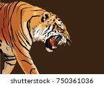 tiger walking and roaring  | Shutterstock .eps vector #750361036