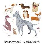 vector illustration  set of... | Shutterstock .eps vector #750399076