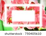 orchid flower picture for design   Shutterstock . vector #750405610