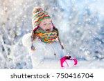 child feeding tit bird in... | Shutterstock . vector #750416704