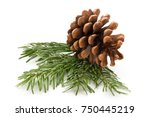 christmas cone with red berries ... | Shutterstock . vector #750445219