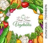 vegetables and fresh farm...   Shutterstock .eps vector #750448696