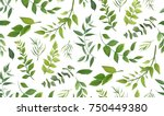 Stock vector seamless pattern of eucalyptus palm fern different tree foliage natural branches green leaves 750449380