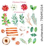 christmas and new year...   Shutterstock . vector #750491314