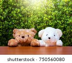 white and brown teddy bear on... | Shutterstock . vector #750560080