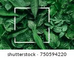 Stock photo creative layout made of flowers and leaves with paper card note flat lay nature concept 750594220