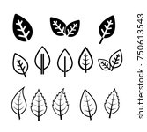 black and white  leaf icons | Shutterstock .eps vector #750613543