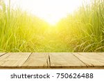 rice field and sunrise at north ... | Shutterstock . vector #750626488