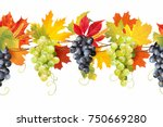 seamless border with ripe grape ... | Shutterstock .eps vector #750669280