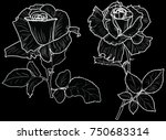 illustration with small rose... | Shutterstock .eps vector #750683314