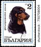bulgaria   circa 1970  postage...   Shutterstock . vector #750708004