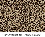 Stock vector leopard pattern design vector illustration background 750741109