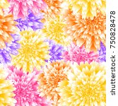 vector chrysanthemum floral... | Shutterstock .eps vector #750828478