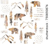 forest seamless pattern. wild...   Shutterstock . vector #750850876