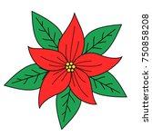 Poinsettia Red Flowers With...