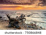 sunset ocean beach log landscape | Shutterstock . vector #750866848