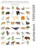 north america flora and fauna... | Shutterstock .eps vector #750910339