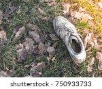 old worn sneakers | Shutterstock . vector #750933733