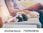 Stock photo woman sitting on sofa in living room with her pets little dog and cat 750963856