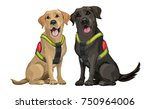 a team of rescue dogs  a yellow ... | Shutterstock .eps vector #750964006