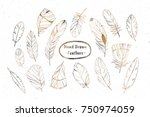 collection of decorative...   Shutterstock . vector #750974059