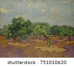 Olive Trees  By Vincent Van...