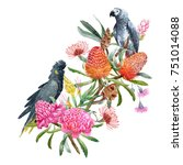 Watercolor  Australian Floral...