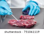 food safety expert inspecting... | Shutterstock . vector #751061119