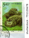 Small photo of GOMEL, BELARUS, 27 OCTOBER 2017, Stamp printed in China shows image of the Alligator sinensis, circa 2000.