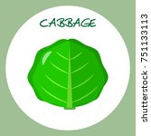 cabbage icon in flat style.... | Shutterstock . vector #751133113