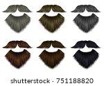 set long  beard and mustache... | Shutterstock .eps vector #751188820