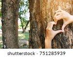 Hug Big Tree  Concept Nature...