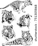 set of vector drawings on the...   Shutterstock .eps vector #751305868