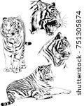 set of vector drawings on the... | Shutterstock .eps vector #751305874