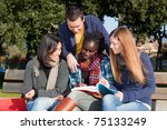 Stock photo college students studying together at park 75133249